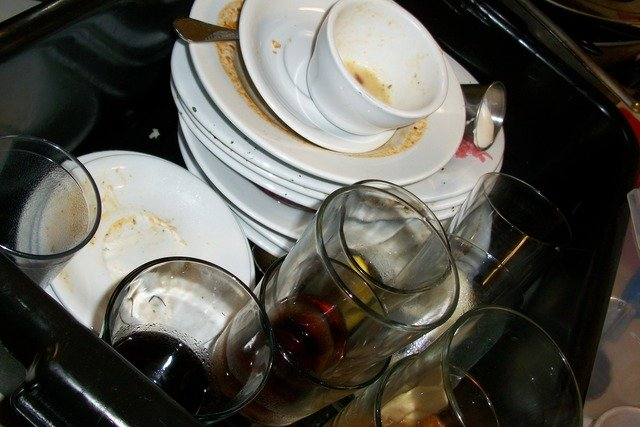 dirty dishes attract mice