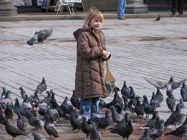 girl surronded by pigeons in basildon