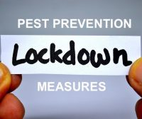 lockdown pest prevention