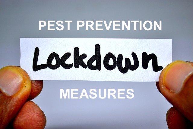 lockdown pest prevention