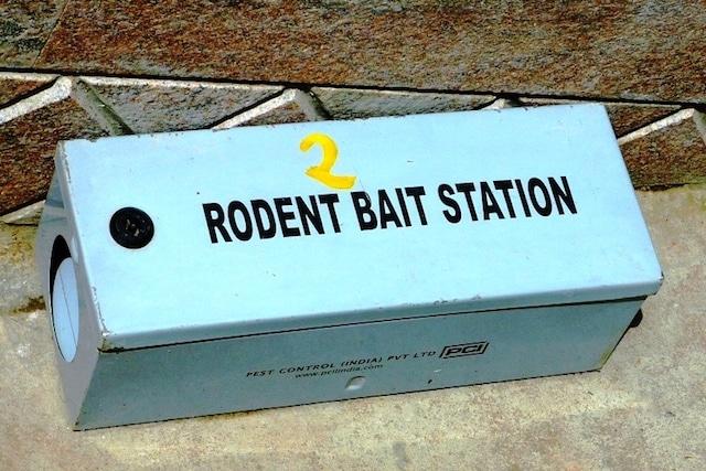 bait box in essex garden